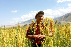 "The pioneer farmer who started growing quinoa in the area is 44-year-old agronomist Azamat Kaseev. His company AgroLead is a major producer of this super crop in the region. It all began in 2012 when he received first seeds of quinoa varieties ""Regalona"" and ""Titicaca"" from the Food and Agriculture Organization of the United Nations (FAO). It has taken him around five years to test and adapt the crop to local conditions."
